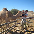 Matt and Graham feed a camel